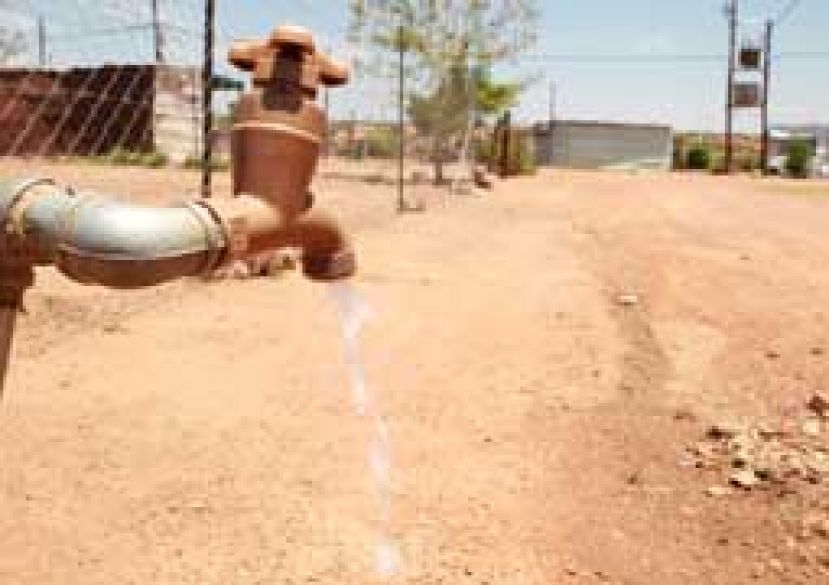 The Chairperson of the Select Committee on Social Services, Cathy Dlamini, has called for full cooperation between various government entities to find soluble solutions to the ongoing water crisis