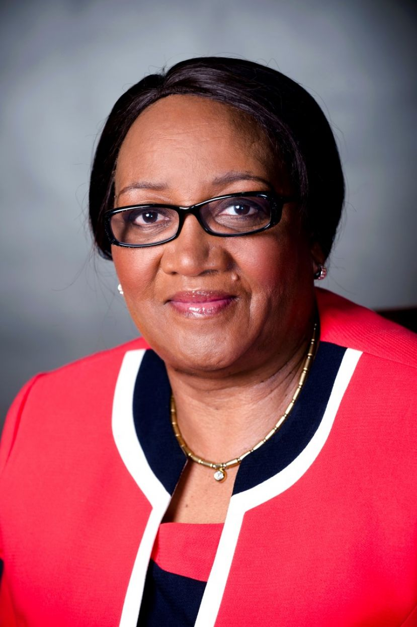 MEC for Social Development in KwaZulu-Natal, Weziwe Thusi